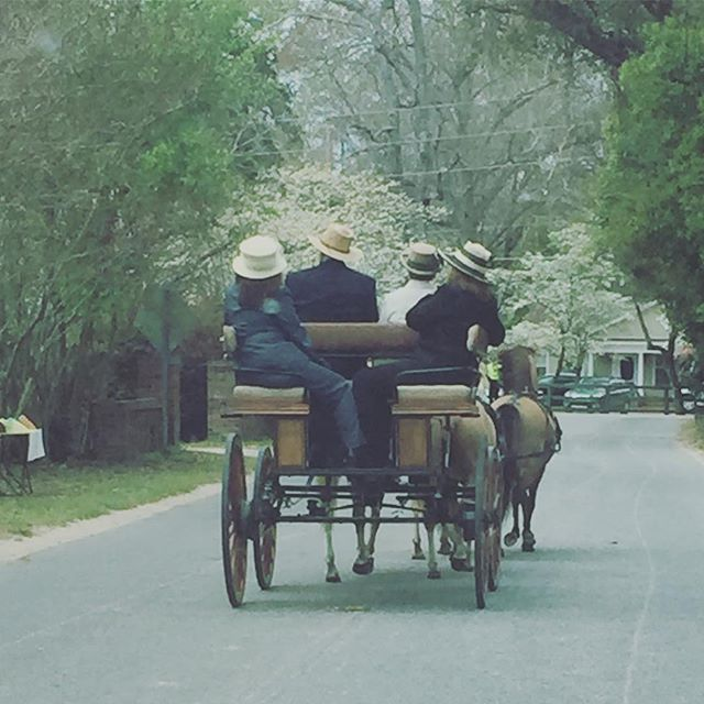 Instagram: Traffic in the 'hood today. #dunbartonoaks #aikensteeplechase2017